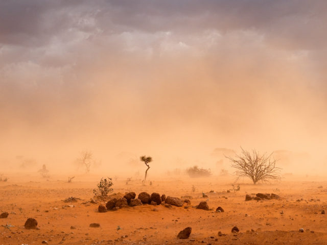 What is Climate Migration?